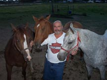 Jay with mares